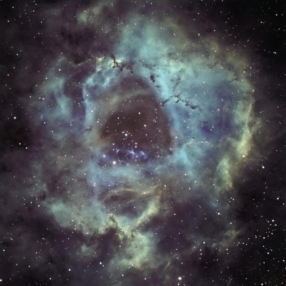 la nébuleuse la rosette NGC2237