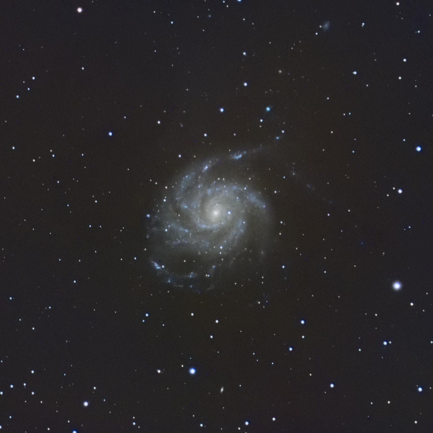 La galaxie M101