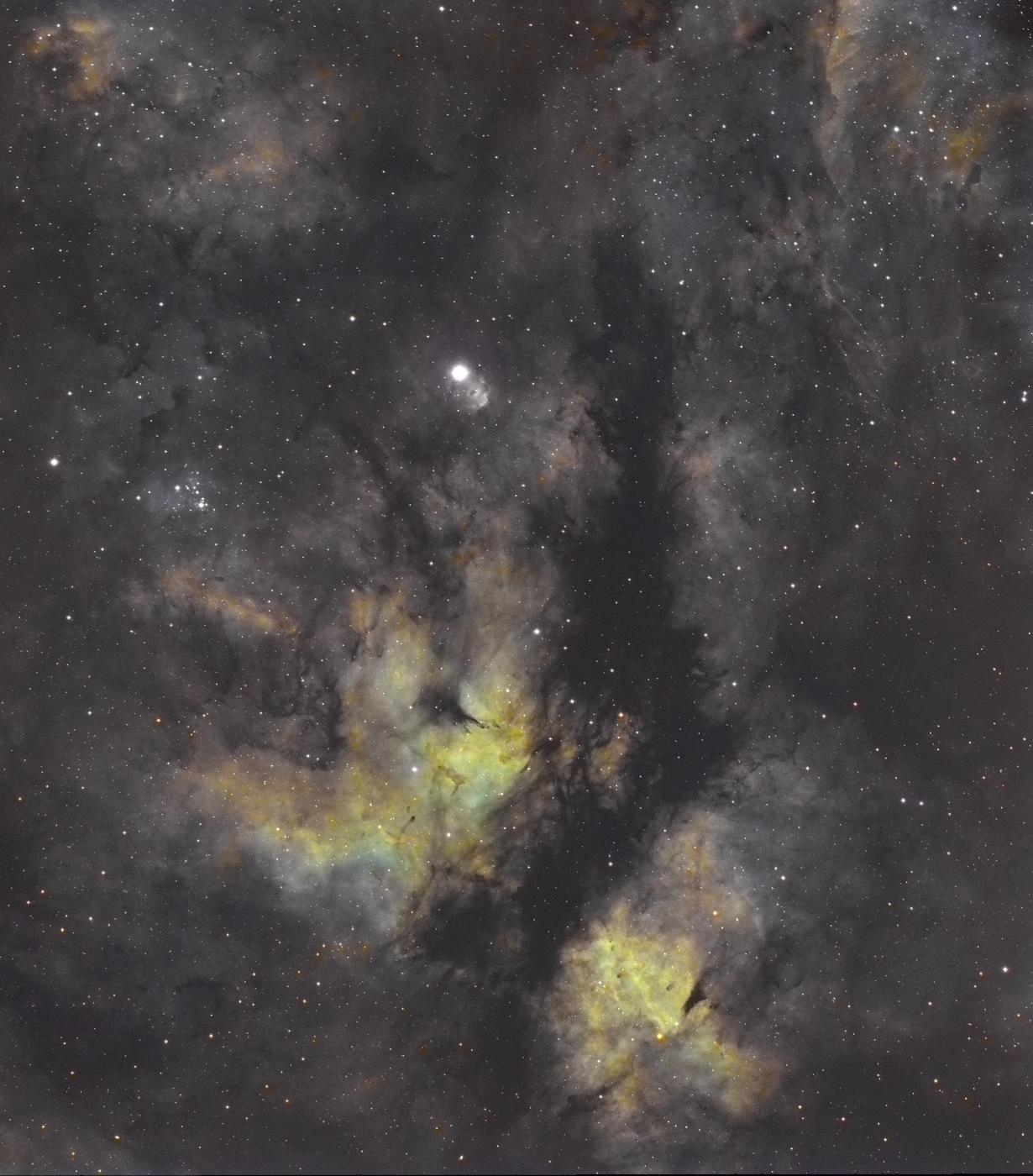 Nébuleuses autour de Gamma du cygne